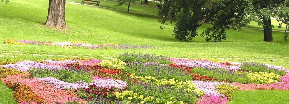 A beautiful well manicured flower bed.